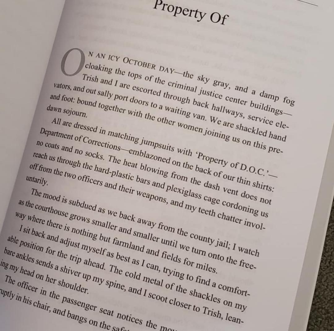 Book Snippet